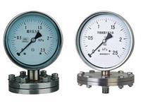 法蘭式不銹鋼膜片壓力表 YPF-100B-F 0~0.6Mpa