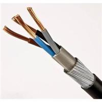 鋼絲鎧裝計算機電纜 ZR-DJYPV32