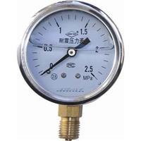 不銹鋼耐振壓力表 ybfn-100