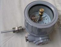 天康隔爆金屬溫度計 WSSX-410B WSSX-480B WSSX-411B