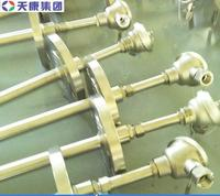 安徽天康鎧裝防爆熱電偶 WRNK2-440