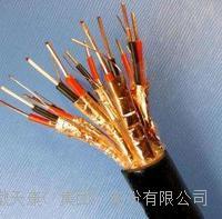 天康阻燃電纜 ZR-DJYVP2-300/500V-1*2*1.5
