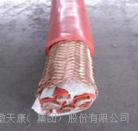 耐高溫硅橡膠變頻電纜 BPGGP、BPGGP2、BPGGPP2