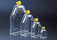 25cm2正方斜口细胞培养瓶 orj-1647