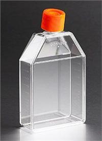 150cm2培养瓶 orj-16474