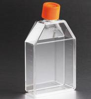 Corning康宁75cm细胞培养瓶 430720