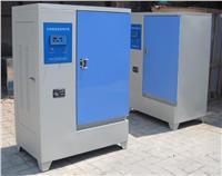 水泥标准养护箱 水泥养护箱 养护箱