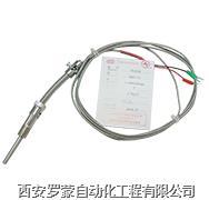 WZPK-191针式铠装铂电阻 WZPK-191