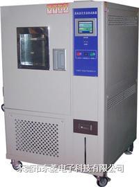 恒温恒湿试验机 DLH-4080