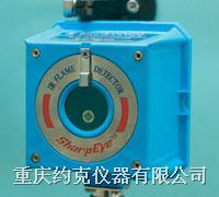 微型红外火焰探测器 20/20MR