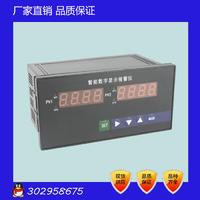 NPXM-4012P0 双通道智能数字显示报警仪 智能双路显示仪表 NPXM-4012P0