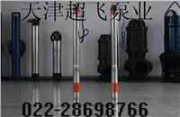天津熱水潛水泵超飛