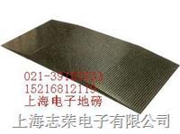 定量包裝電子秤,多功能電子秤,上海電子平臺秤 TCS-150