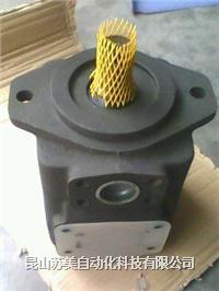 德國REXROTH液壓泵,REXROTH液壓馬達總成,REXROTH液壓配件 PV7-1X,ABAPG