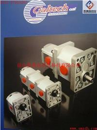 意大利GALTECH齿轮泵,GALTECH单联泵,GALTECH多联泵,GALTECH泵,GALTECH液压阀,GALTECH多路阀 1SPA,2SPA,3SPA,Q25,Q30,Q35,Q45,Q50,Q75,Q80,Q130