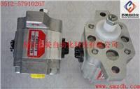 HPI油泵,HPI齿轮泵,HPI PUMP,P3AAN0075FL20B01N-C5082379