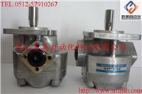 日本(NIHON SPEED)K1P齿轮泵,K1P7R11A齿轮泵,K1P7L11A油泵,K1P7RV11A泵 K1P7R11A,K1P7L11A,K1P7RV11A,K1P10R11A,K1P10L11A,K1