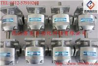 日本(NIHON SPEED)K1P齿轮泵,K1P10R11A齿轮泵,K1P10L11A油泵,K1P10RV11A泵 K1P10R11A,K1P10L11A,K1P10RV11A