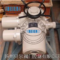 电动调节执行器 DZT10-24
