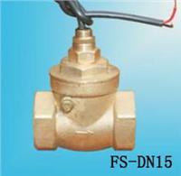 FS-DN15水流开关 FS-DN15