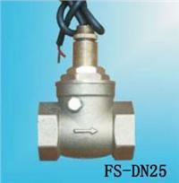 FS-DN25水流开关 FS-DN25
