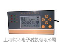 智能定量控制仪 WK