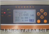 全中文流量定量控制仪 WK