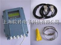 TDS-100F固定式超声波流量计 TDS-100F