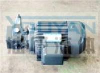 油泵电机组 YBDZ-C20(V3)-CY YBDZ-D20(V3)-CY 油研油泵电机组 YOUYAN油泵电机组  YBDZ-B32(V3)-CY YBDZ-C32(V3)-CY