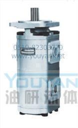 双联齿轮油泵 CBG2063/2040-BF CBG2063/2050-BF 油研双联齿轮油泵 YOUYAN双联齿轮油泵  CBG2063/2040-BF CBG2063/2050-BF