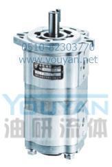 双联齿轮油泵 CBWL-E316/310-AF CBWL-E316/310-AL CBWL-E316/310-CF 油研双联齿轮油泵 CBWL-E316/310-AF CBWL-E316/310-AL CBWL-E316/310-CF