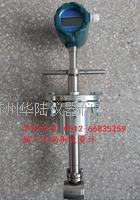 插入式蒸汽流量计   HLLUGBCR10-1000