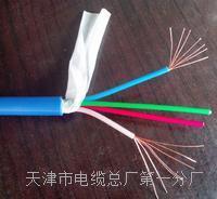 阻燃通信電纜ZA-HYA53實物圖廠家