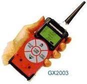 GX-2003可燃气体检测仪