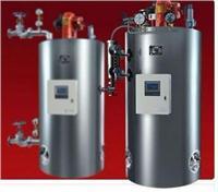 立式燃气蒸汽锅炉 LSS