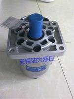 合肥長源齒輪泵CBHCB-F14.5-AL&  CBHCB-F14.5-AL&