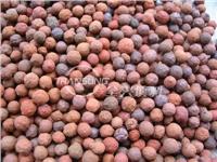 生物陶粒滤料(挂膜滤料)