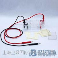 北京六一DYCP-31CN型琼脂糖水平电泳仪(小号)品牌 DYCP-31CN