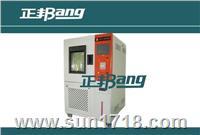 聚光型湿冻湿热温度循环试验箱 BA-HCPV