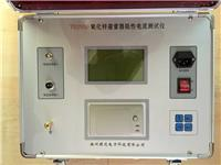 氧化锌避雷器带电测试仪 TD2930