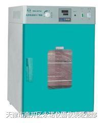 电热恒温鼓风干燥箱/烘箱/烤箱 DHG-9030A