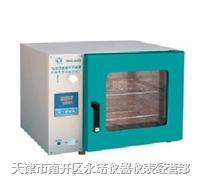 干燥箱 烘箱 DHG-9023A
