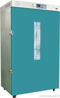 恒温干燥箱 DHG9620A