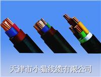 小猫线缆电缆 YJV