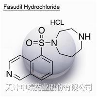 盐酸法舒地尔 105628-07-7