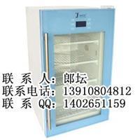 嵌入式药品冷藏箱 嵌入式药品冷藏箱