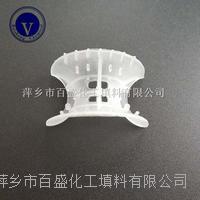 萍鄉百盛塔內件環保壓降低塑料異鞍環 38-76MM