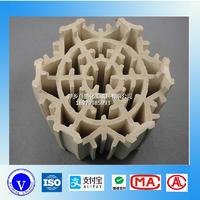 萍鄉百盛通量大輕瓷多齒環規整填料  XA-1 205 15 12 60 124 79 330