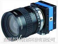 1394 CCD 彩色 相机