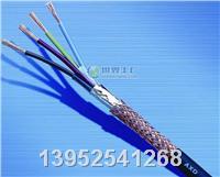 计算机电缆DJYVPVP